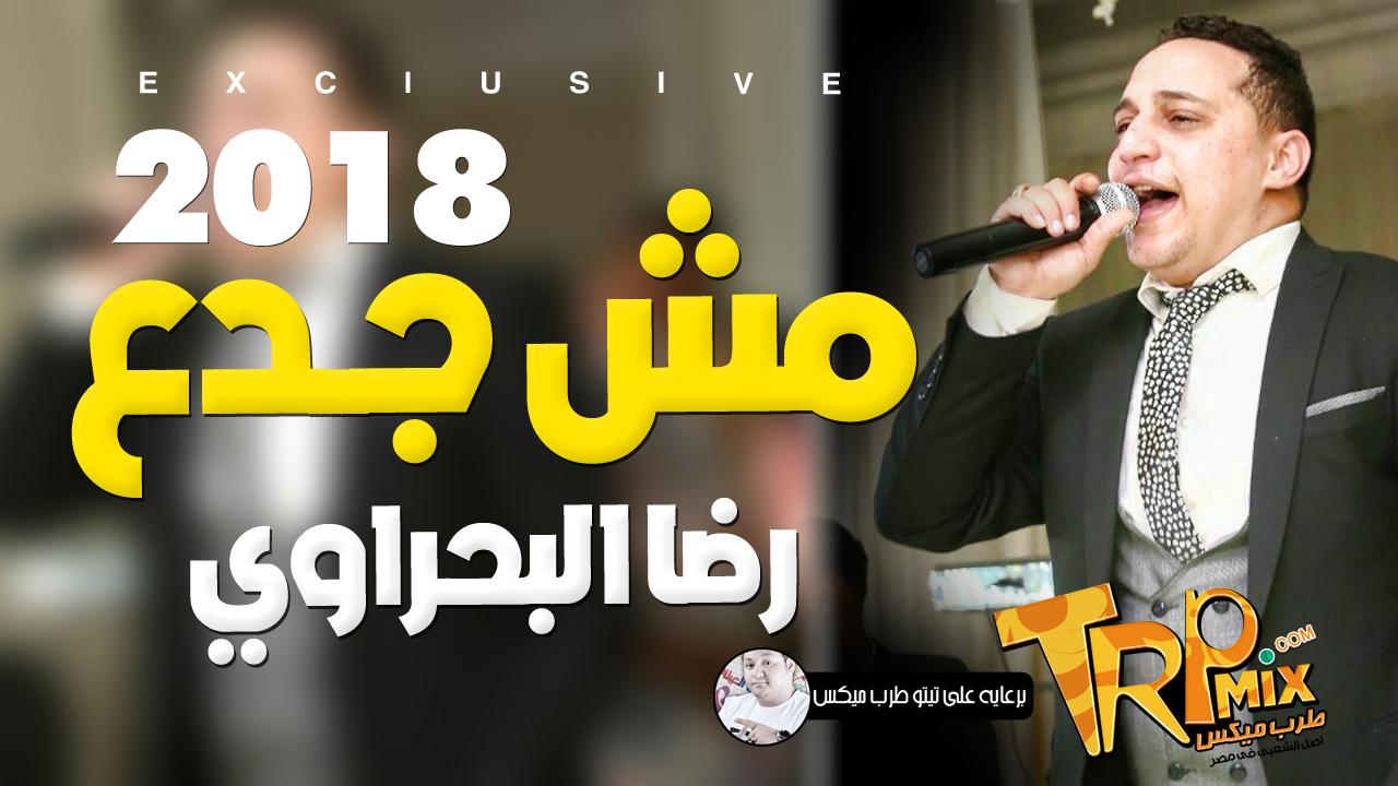 رضا البحراوي 2019 | اجمد موال مش جدع | هيكسر الدنيا