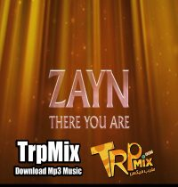 ZAYN - There You Are