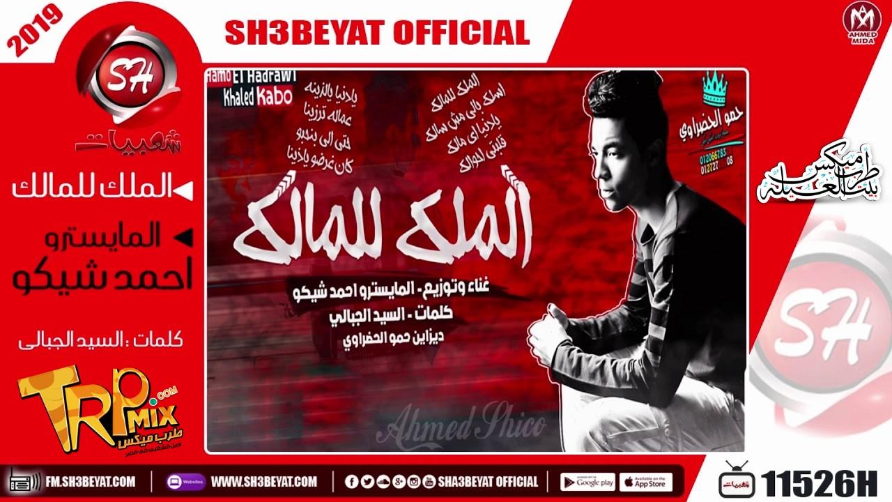 الملك للمالك اسلك يالي مش سالك غناء  المايسترو احمد شيكو 2019