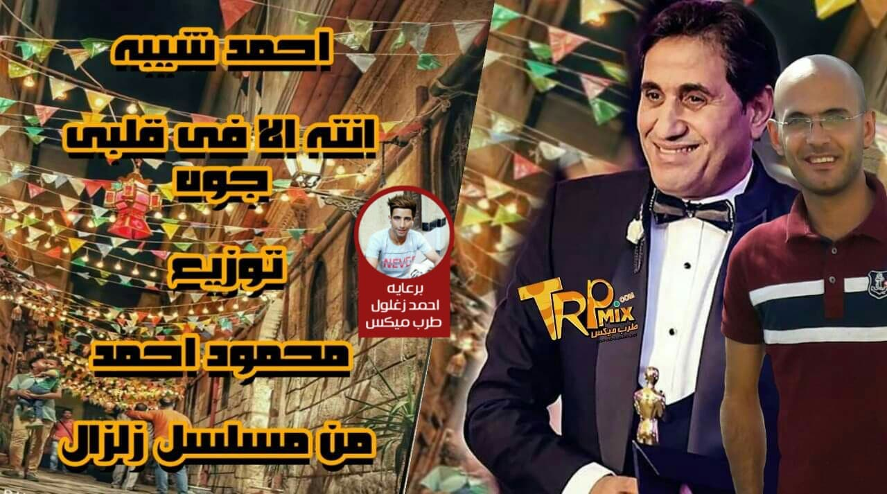 أغنية انت الي في قلبي غناء احمد شيبة توزيع محمود احمد 2019