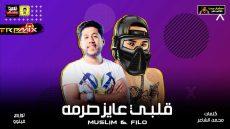 """مهرجان """"قلبي عايز صرمة"""" غناء : ملسم وفيلو كلمات : محمد الشاعر توزيع : فيلو"""