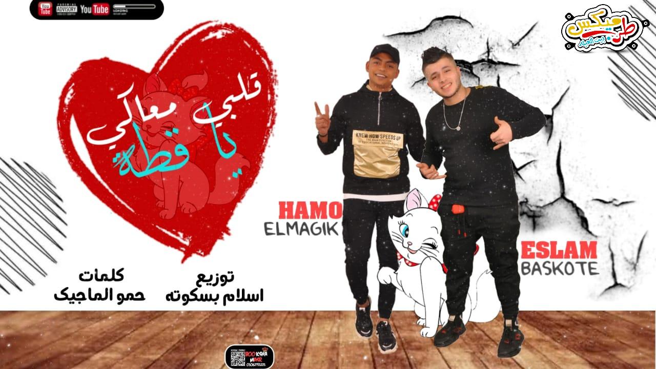 مهرجان قلبي معاكي يا قطه غناء اسلام بسكوته - حمو الماجيك - توزيع اسلام بسكوتة 2021