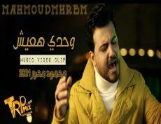 اغنيه انا مش مبسوط  وحدي هعيش غناء محمود محرم طرب ميكس  ٢٠٢١