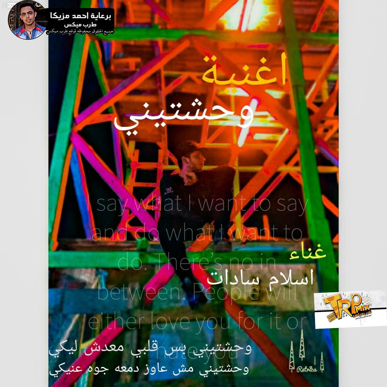 اغنيه وحشتيني غناء اسلام سدات2019